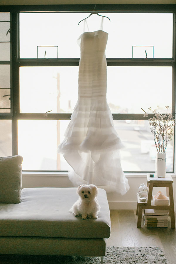 Hanging wedding dress and dog waiting for the bride on her wedding day in San Francisco by destination wedding planner Mango Muse Events creator of Passport to Joy online wedding planning course for couples