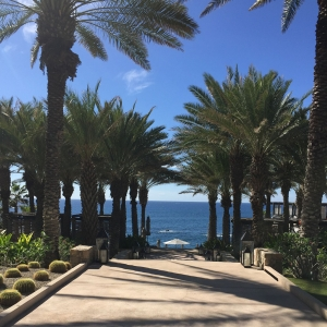 A resort destination wedding venue in Cabo Mexico by destination wedding planner Mango Muse Events creator of Passport to Joy the online wedding planning course for couples