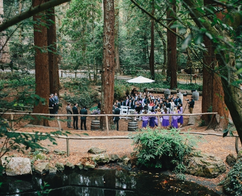 San Francisco wedding ceremony at Stern Grove amongst the redwoods planned by Destination wedding planner, Mango Muse Events creator of Passport to Joy the online wedding planning program for couples