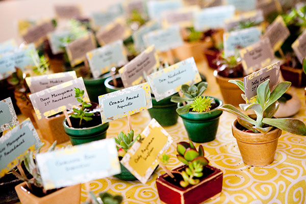 Succulent escort cards and wedding favors at an eco-friendly wedding by Destination wedding planner Mango Muse Events creator of Passport to Joy the online wedding planning course for couples